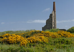 The ruins of Carn Galver mine